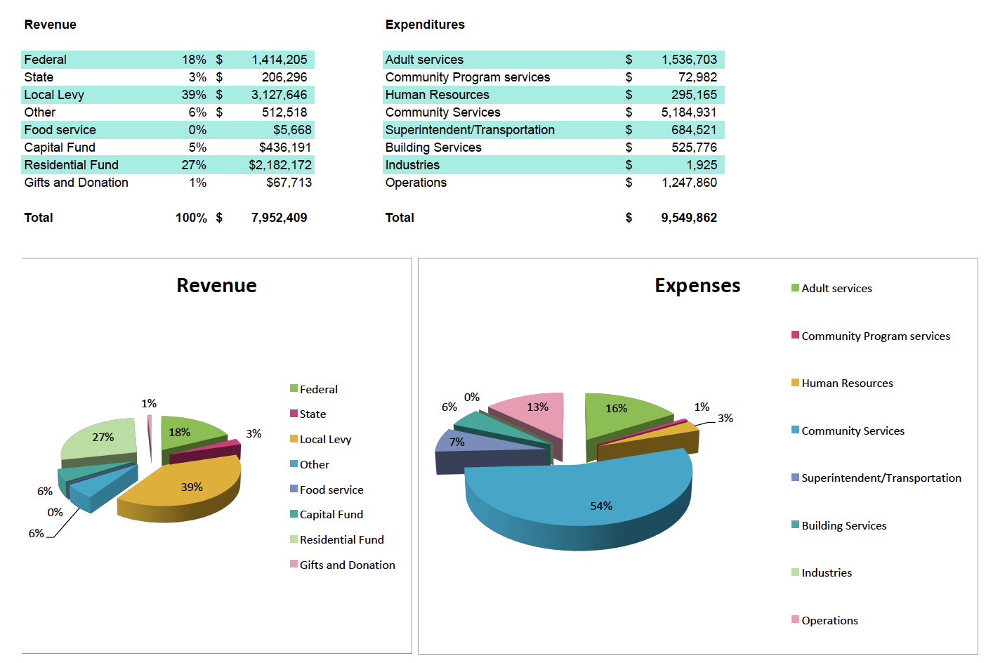 Financial Summary Expenses and Revenue